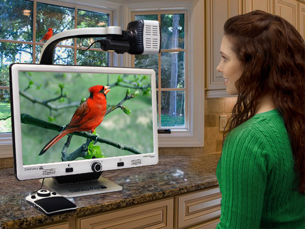 Woman using DaVinci Pro to look out the window at a red bird on a branch.